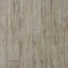 010039 European White Oak