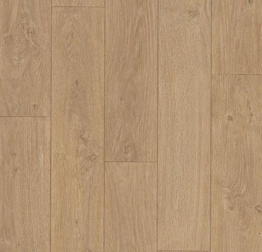 6028 Dashwood Natural Oak