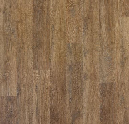 6097 Texas Chestnut Brown
