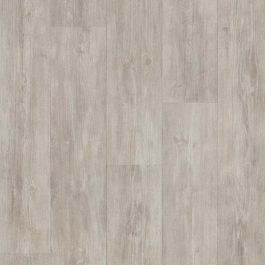 3024 Grey pine